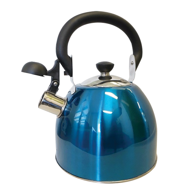 Coast Blue Whistling Kettle (2.5Lt)