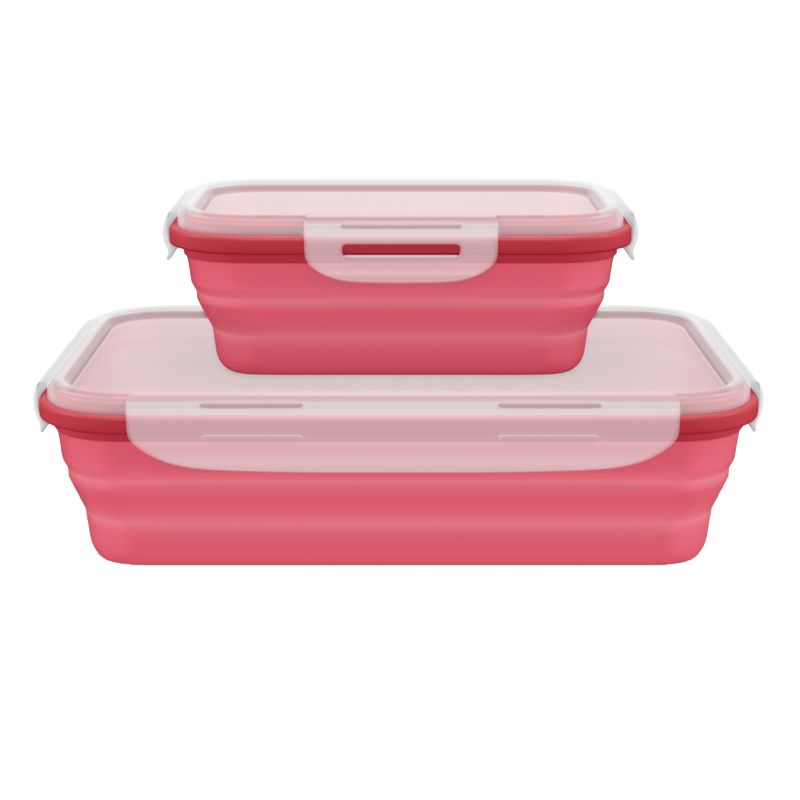 Collapsible Silicone Lunch Box Set Of 2